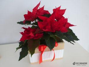 Świąteczne dekoracje w czerwieni